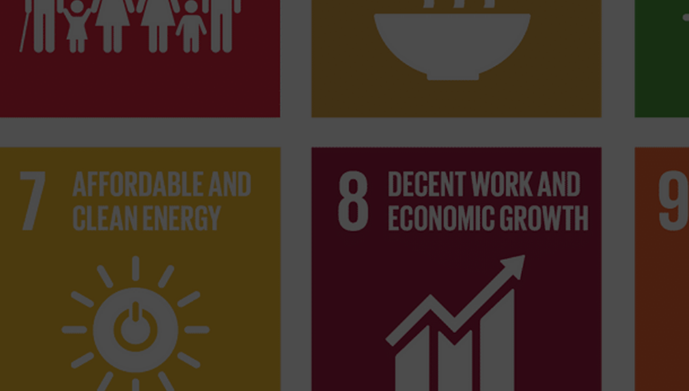 What is? The United Nations Sustainable Development Goals