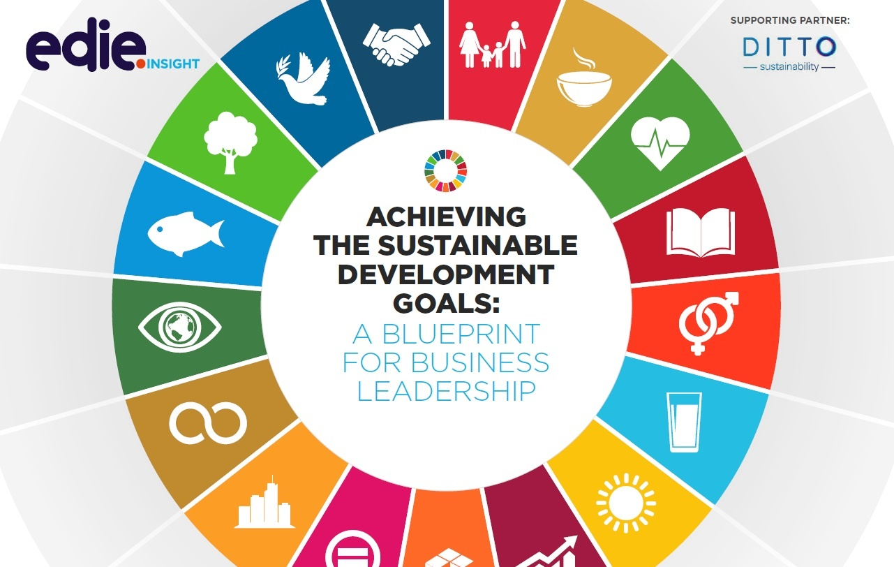 Report: Achieving the Sustainable Development Goals.